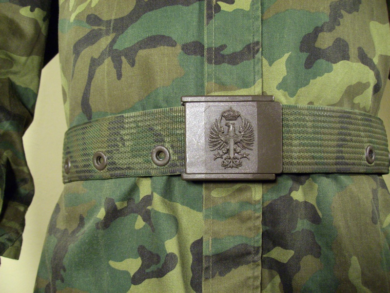 Uniforme armée espagnole 769013cff26