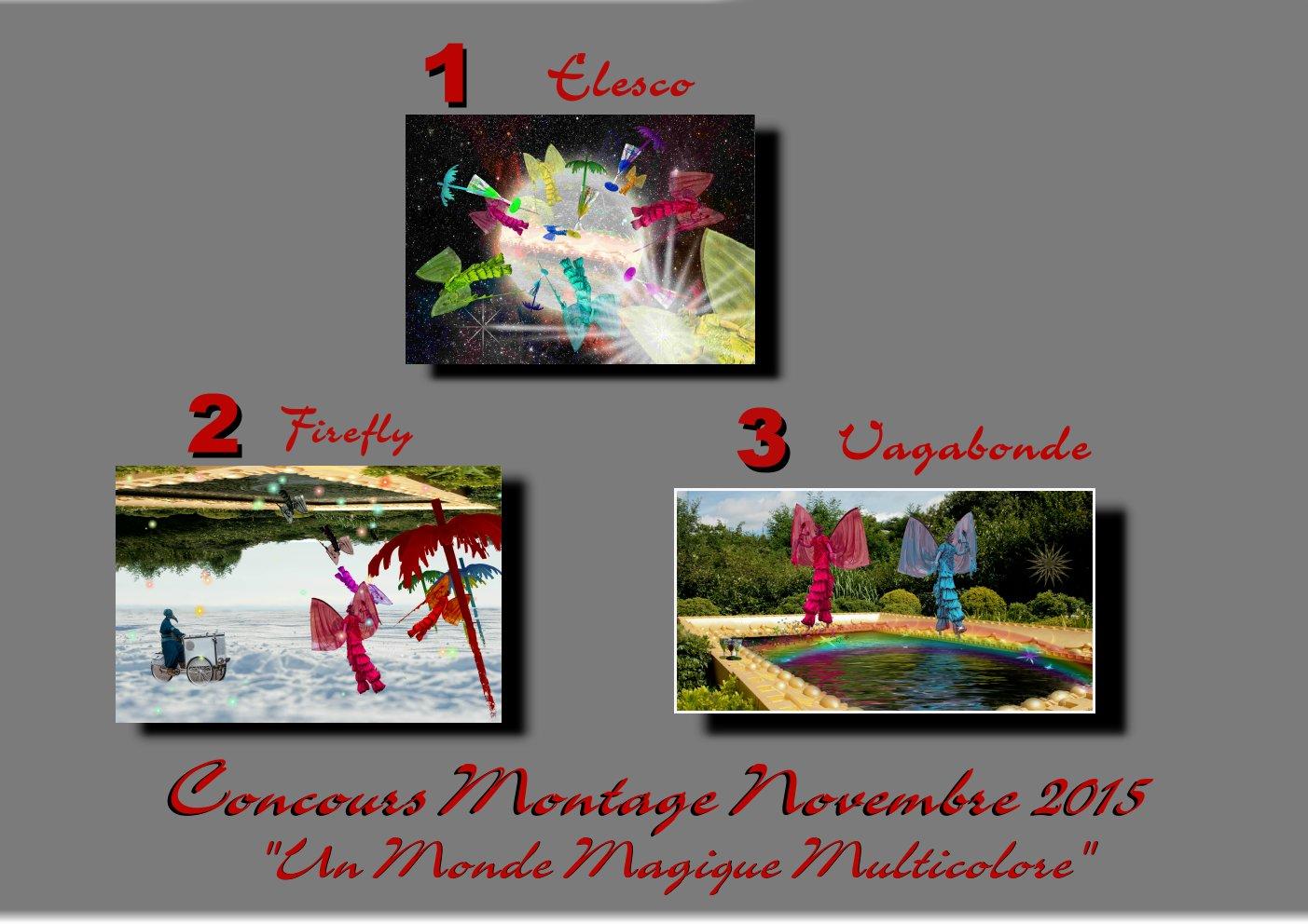 """Concours montage novembre 2015 """" UN MONDE MAGIQUE MULTICOLORE """" Terminé 769849podium"""