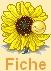 Little dude sunshine - ALTAÏR 772248iconsunflo2