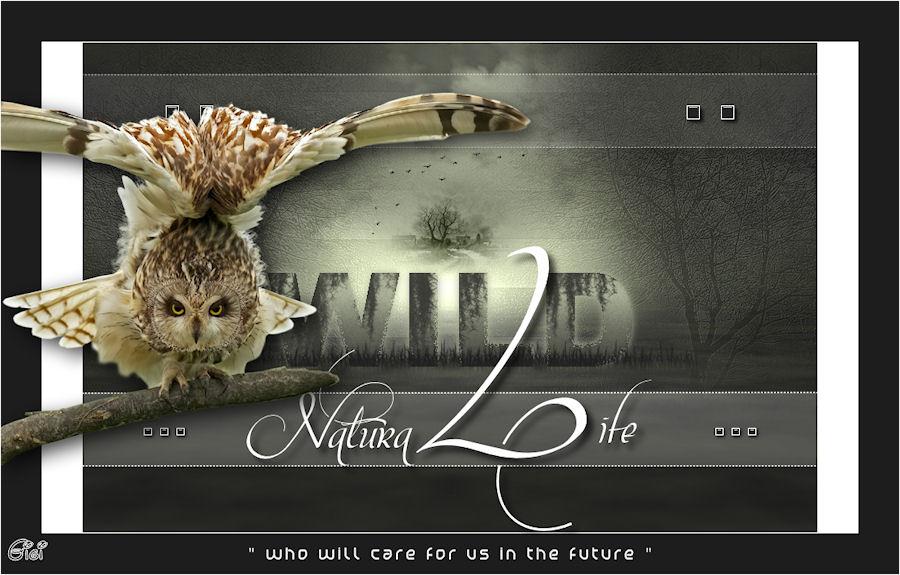 Natura Life 7725941174
