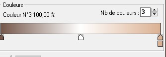 "N° 50  PFS ""MODULE EXTERNE DEGRADE "" 775668fini"