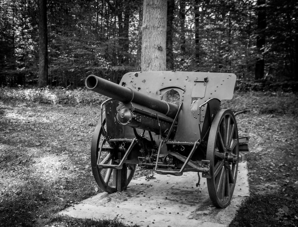 Canons de Belleau 779692IMGP7055
