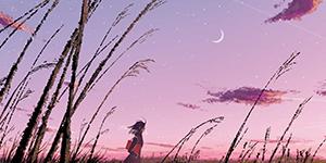 La prairie et les champs