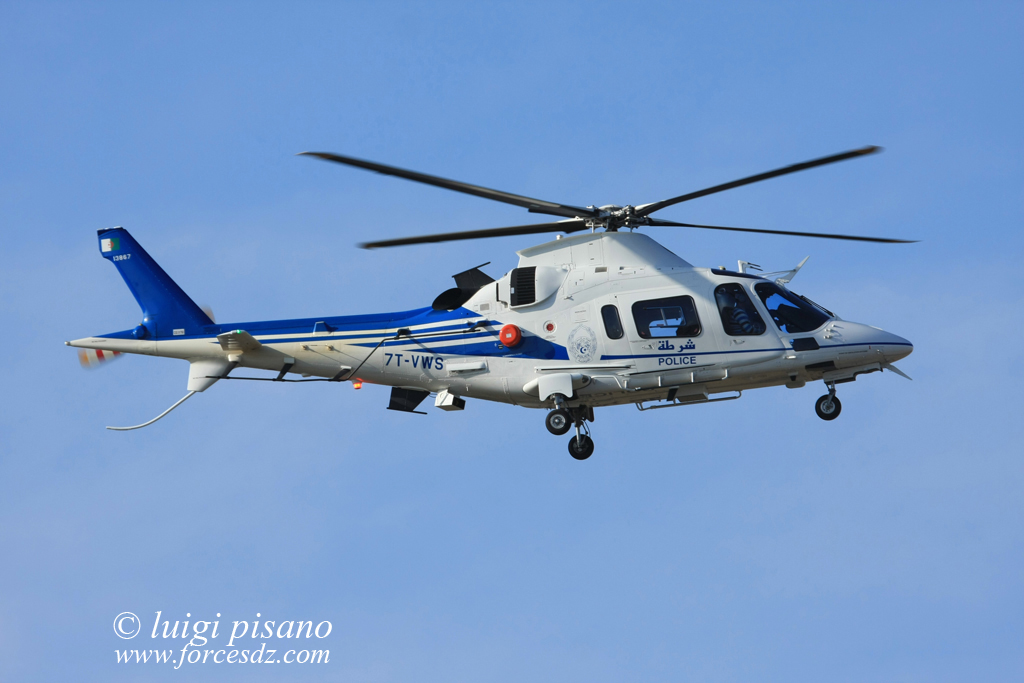 المروحيات التي تمتلكها الجزائر 78530641564564564dsfdsfdss