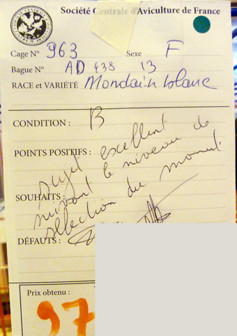 2014 - salon de l'Aviculture de Paris du 22/02/2014 au 02/03/214 - Page 5 786962P1130605