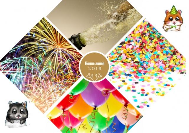 Concours la Cro belle carte de voeux (suivie de l'EuCROvision 2018) 791362CapturecarteMaelys
