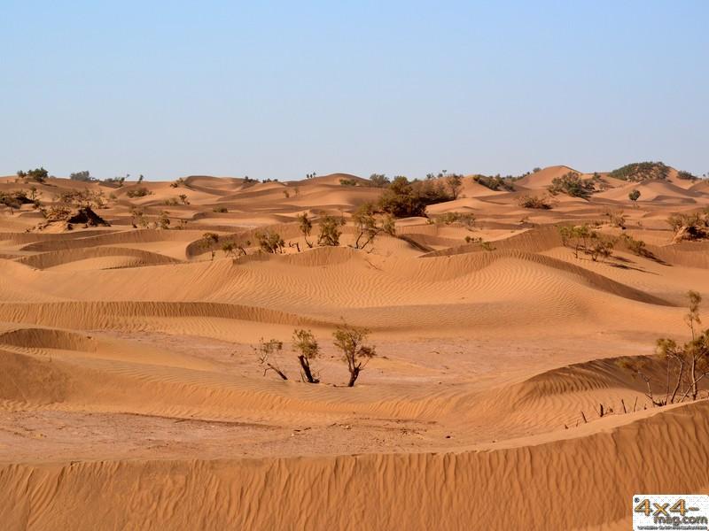 Les images prises par les membres du forum Desti Maroc 796001desert012013