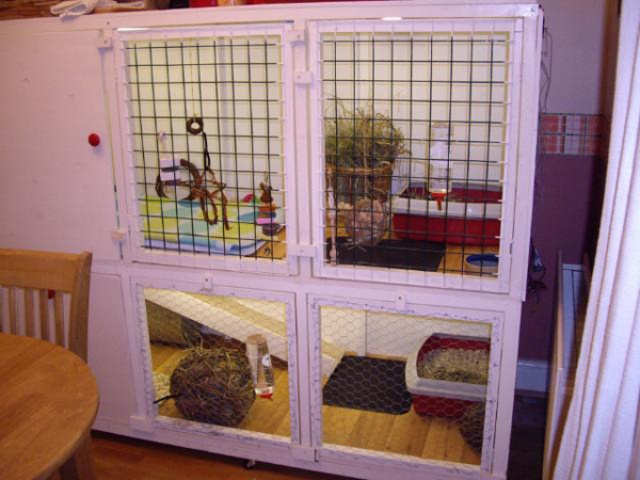 Construction d 39 une cage maison quelques questions for Enclos lapin interieur