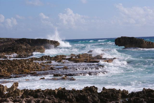 Petit voyage à Cozumel 798613cozumel01