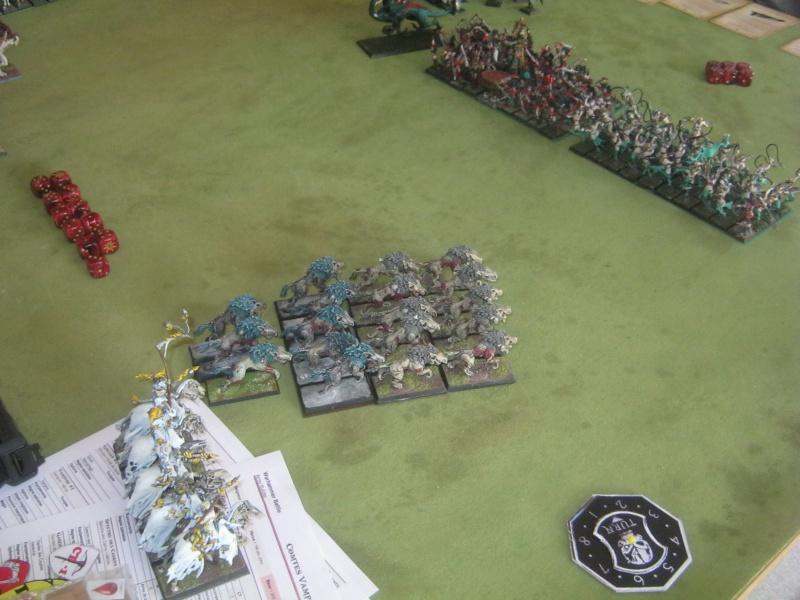 Méga bataille en 3 parties, pour une mini campagne 802188IMG1537