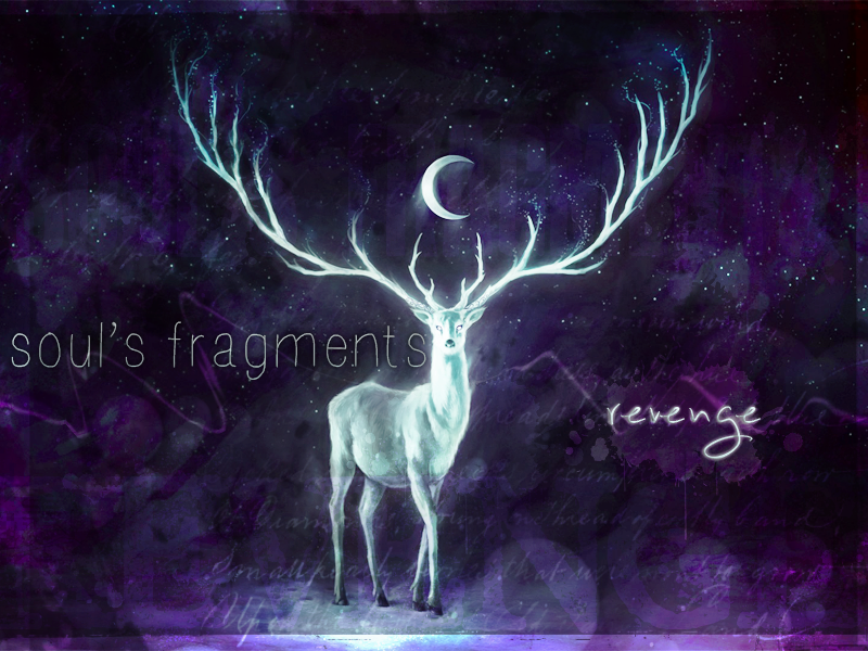 Soul's Fragments • Chapter One : REVENGE • 802601bannsoul