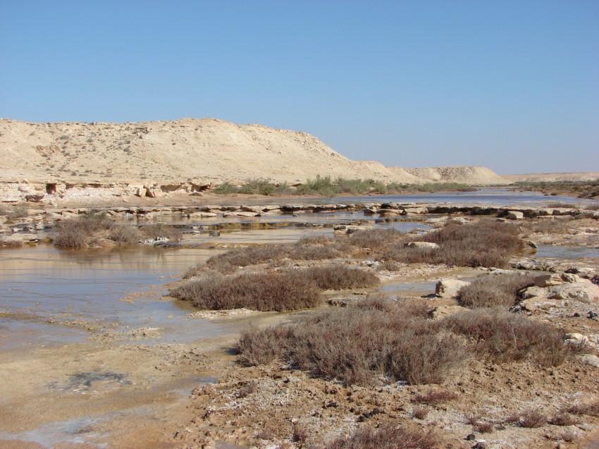 Le Grand Sud du Maroc - II 804668021