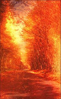 Galerie d'Elf-of-Nature ♥ 805371AutumnAva02