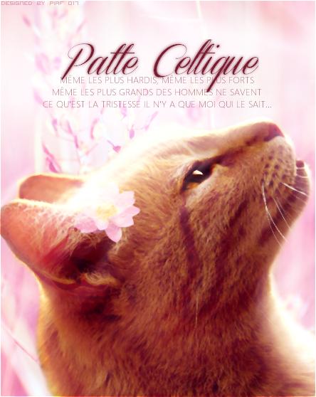 Piaf - ldd 806082signepatteceltique