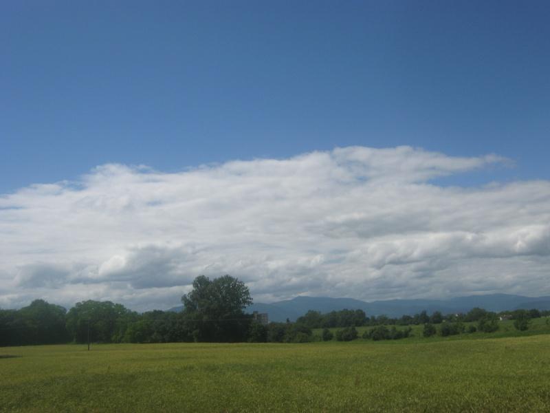 Ballade par une belle après-midi ensoleillé d'été. 816049IMG0422