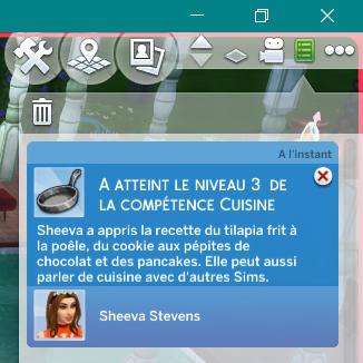 [Clos] Les défis Sims - Niveau 0 - Page 2 816281Level3