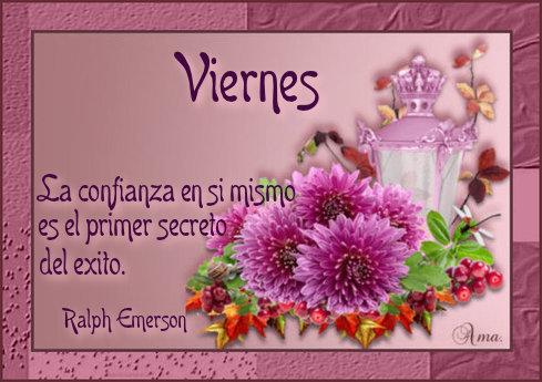 Flores con Frase 817341viernes