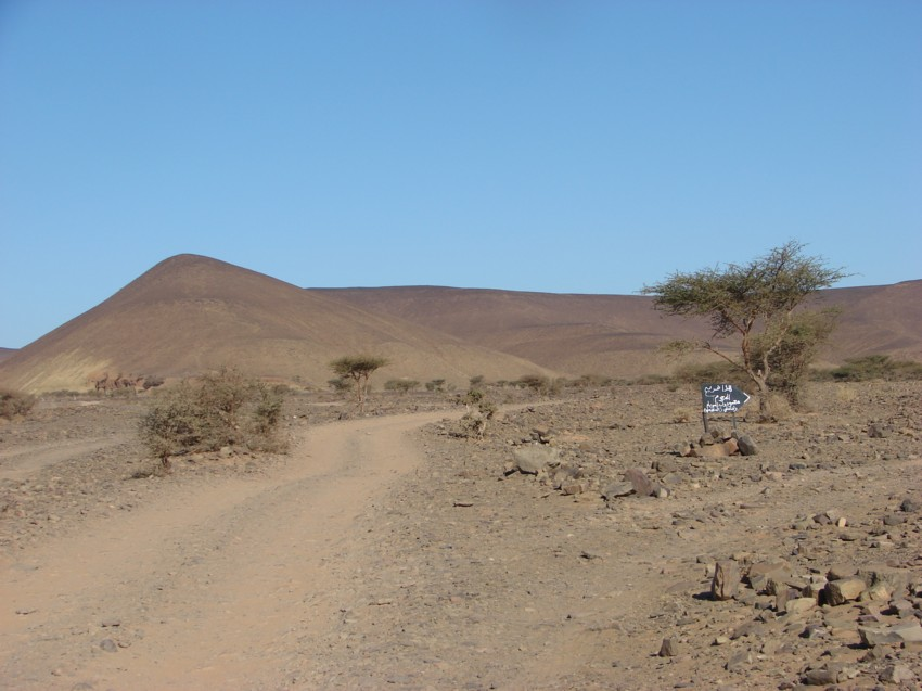 Le Grand Sud du Maroc - II 822411082