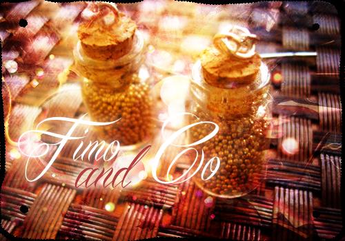 Fimo & Co ! 824087BANNIERE