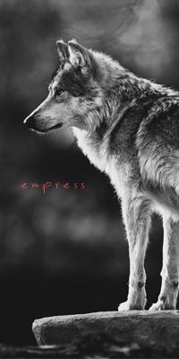 Empress_test