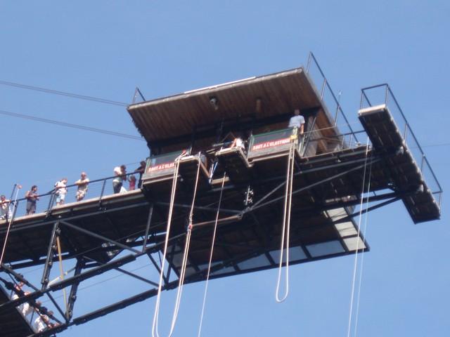 saut à l'elastique - Johnny et Steli 828496Aug24811