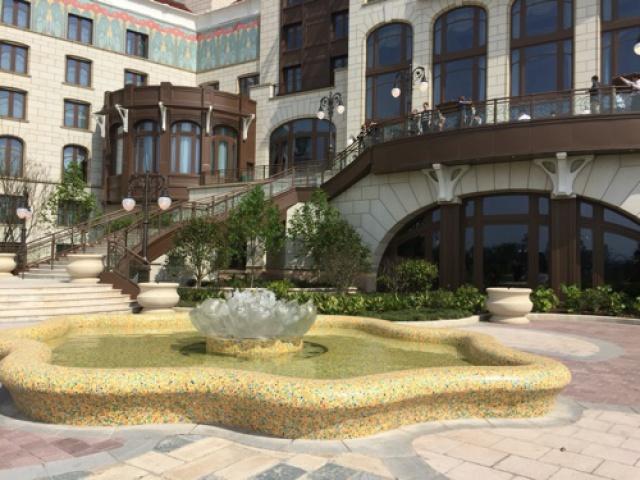 [Shanghai Disney Resort] Le Resort en général - le coin des petites infos  - Page 38 831053w114