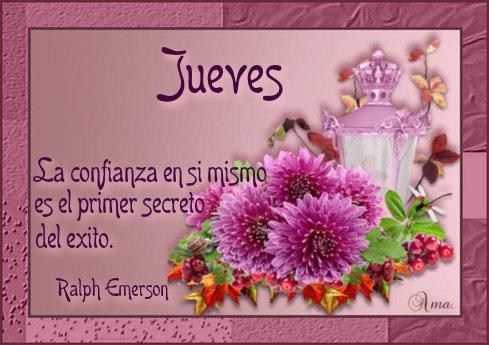 Flores con Frase 831513jueves