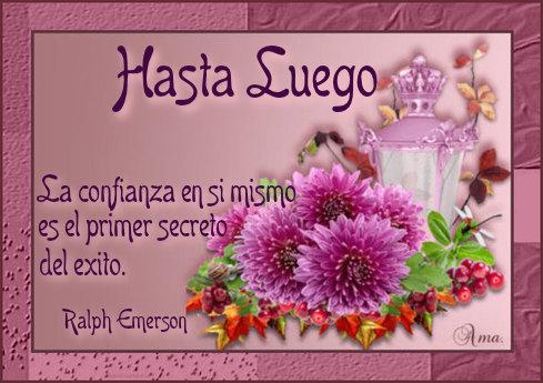 Flores con Frase 831618hastaluego