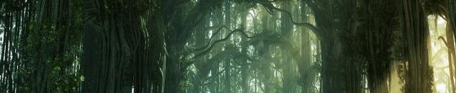 Les Forêts des Brumes-silencieuses