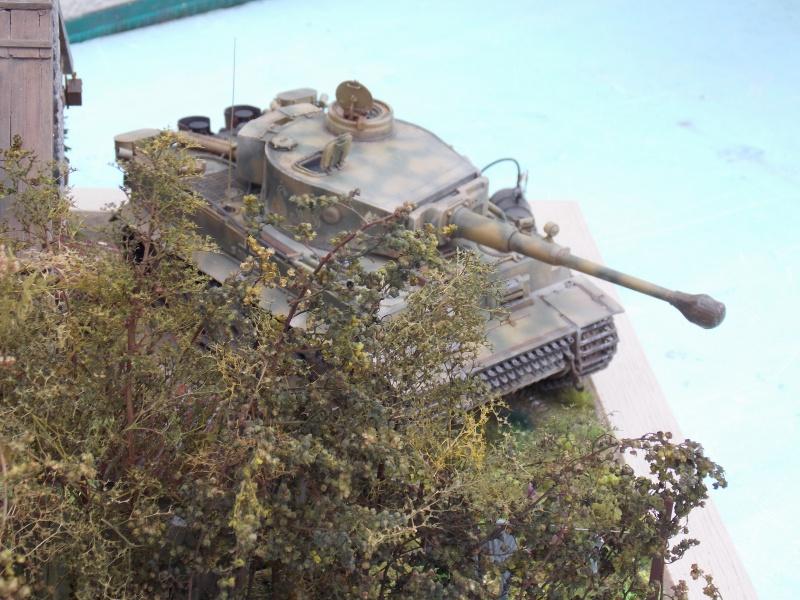 TIGRE S33  avant la bataille de Koursk juillet 43 (Dragon 1/35 dio DIODUMP) - Page 8 833434DSCN4715