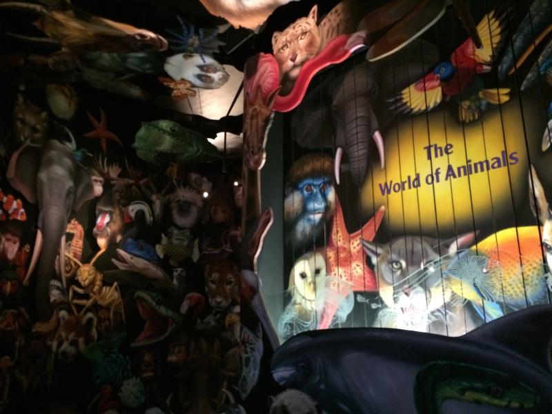Walt Disney World + Universal Studios + Sea World + Busch Gardens Summer 2014 - Page 4 843376IMG2781