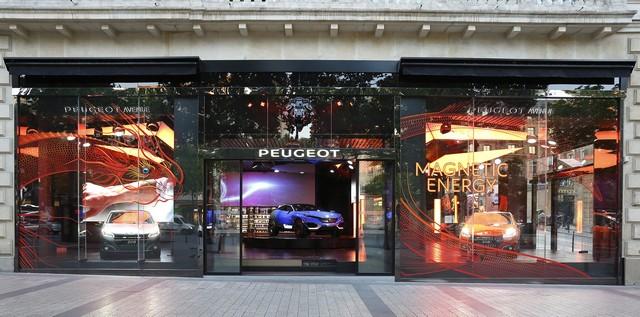 Un Dragon S'installe Au Peugeot Avenue Paris ! 843685SBY7922