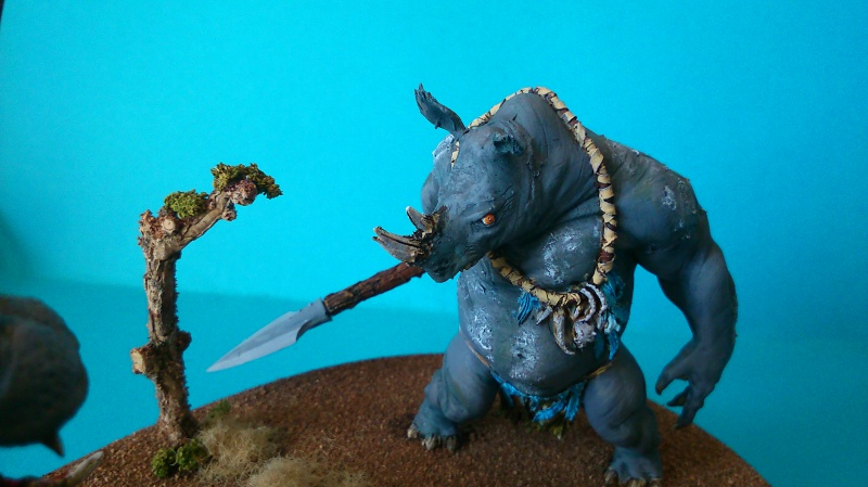 Rhinotor contre hippoguerrier. (Figone 70 mm environs) 844720DSC00041