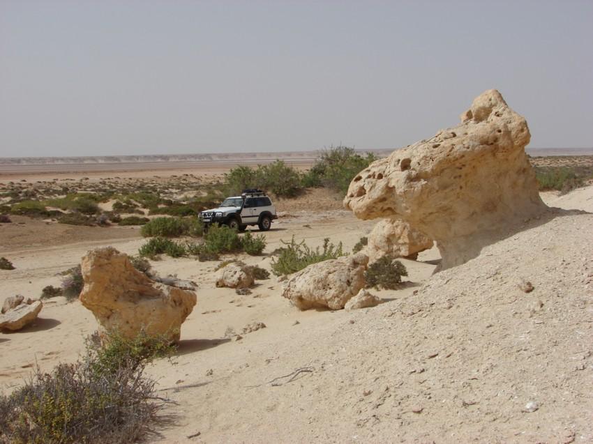 retour maroc avril 2013 845589017