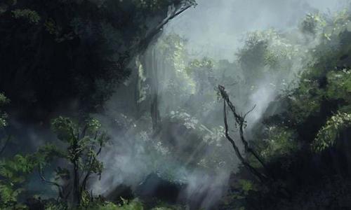Jungle Impénétable