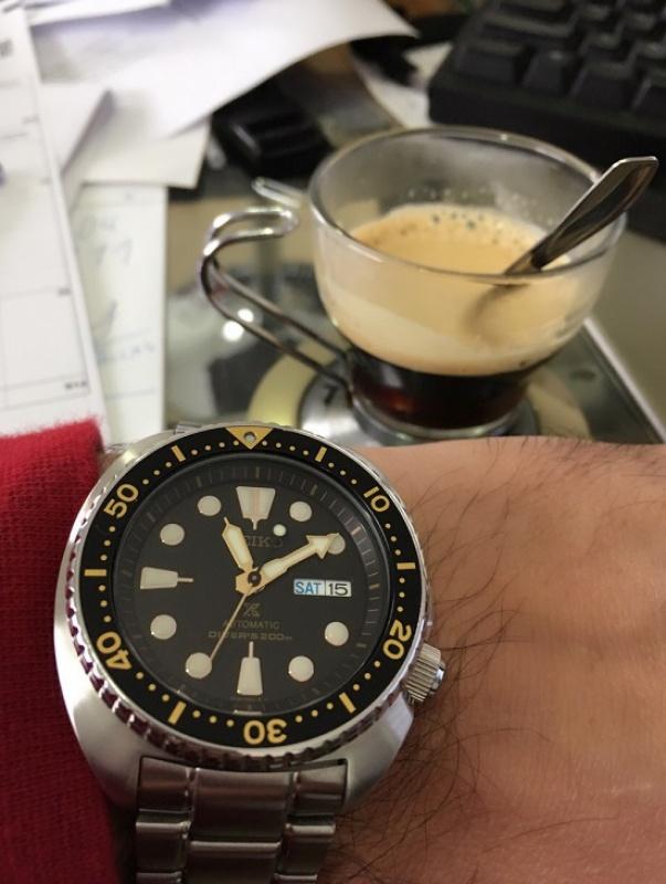 La montre du vendredi, le TGIF watch! - Page 29 846328turtle