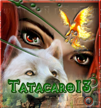 TATACARO13