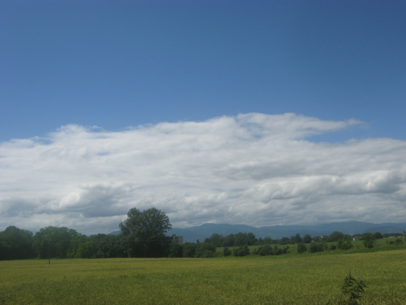 Ballade par une belle après-midi ensoleillé d'été. 853640IMG0425
