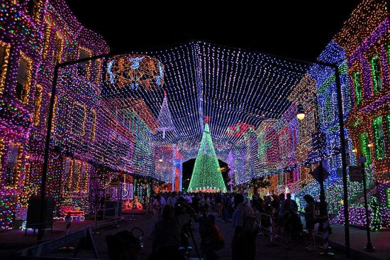 [18-31 octobre 2014] Voyage de noces à Walt Disney World et à Universal - Page 20 857289Osborn4