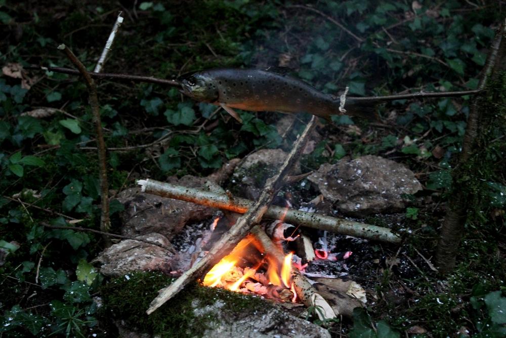 Truite cuite sur feu de bois 863572IMG3038r