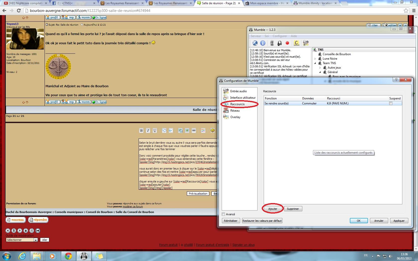 Installer et configurer mumble 865715installationM9