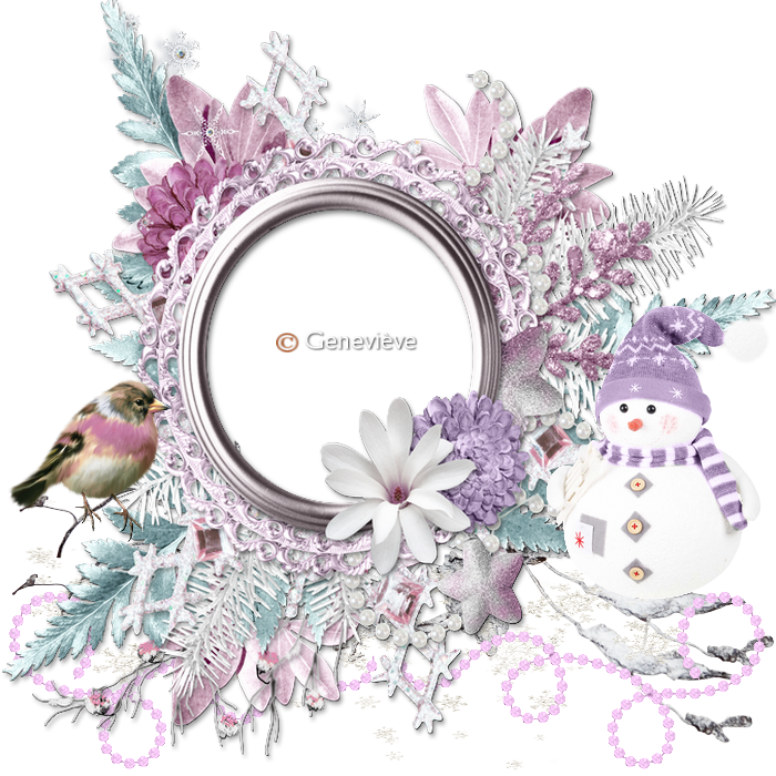 cluters 09 867392clusterbonhomme