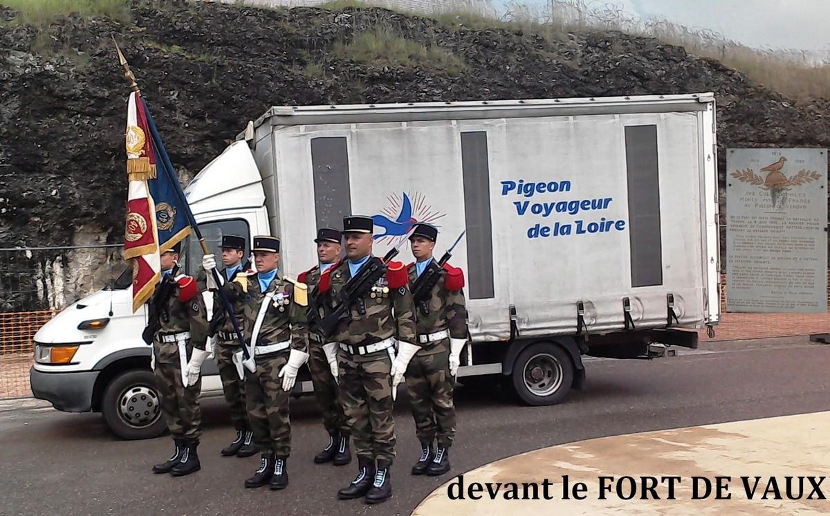 VERDUN 1916/2016  Concours au fort de Vaux 869125camionmilitairesetplaquevaillantred