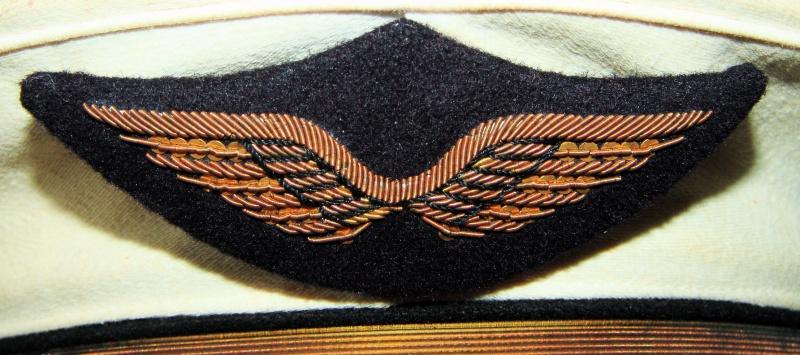 Insigne de casquette armée de l'air 871218DSC012