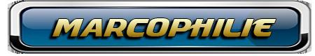 COLLECTIONNEURS DE LA MAYENNE, DE FRANCE ET D'AILLEURS 872705marcophilie