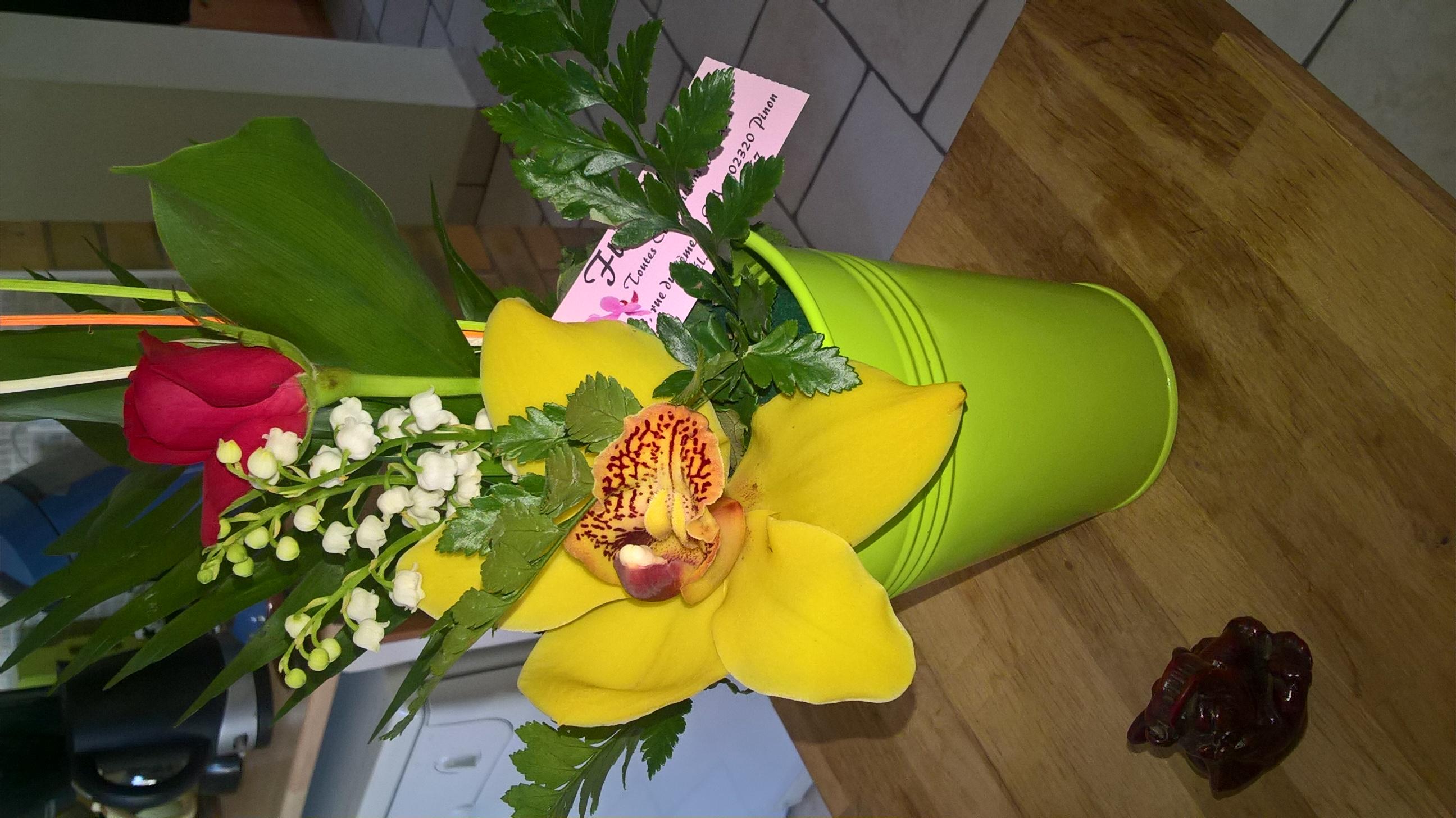 les orchidées d'Edith 874418WP20160501163730Pro