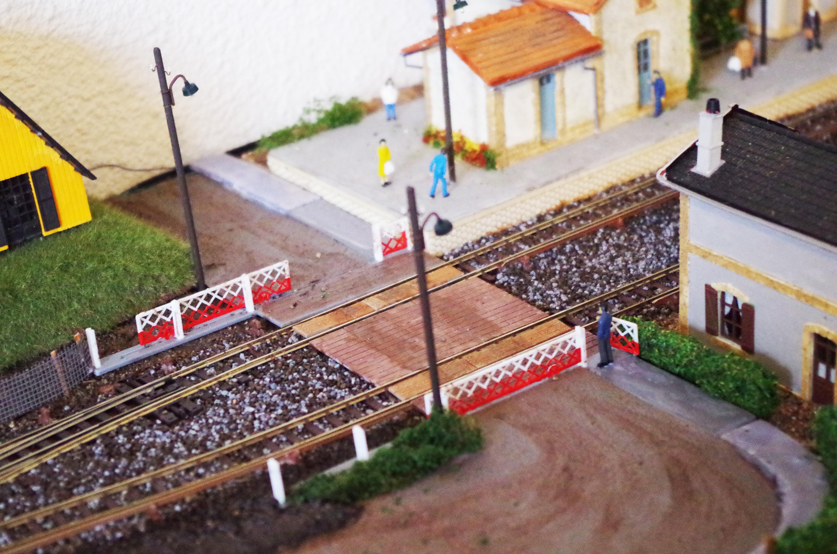 Le Petit Train de Michèle. 879256IMGP0909