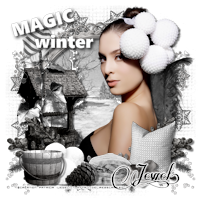 Aperçu des tutos de l'admin Jewel 882236tuto765magicwinter