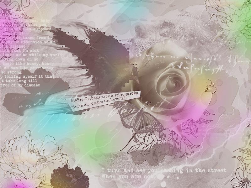 Textures de Milou 882843texturecorbeau4