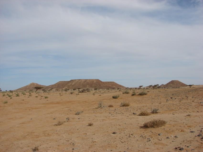 Le Grand Sud du Maroc - II 882860050